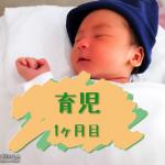 【育児1ヶ月目】育児に休息があっても休日がないのは、会社勤めより大変。