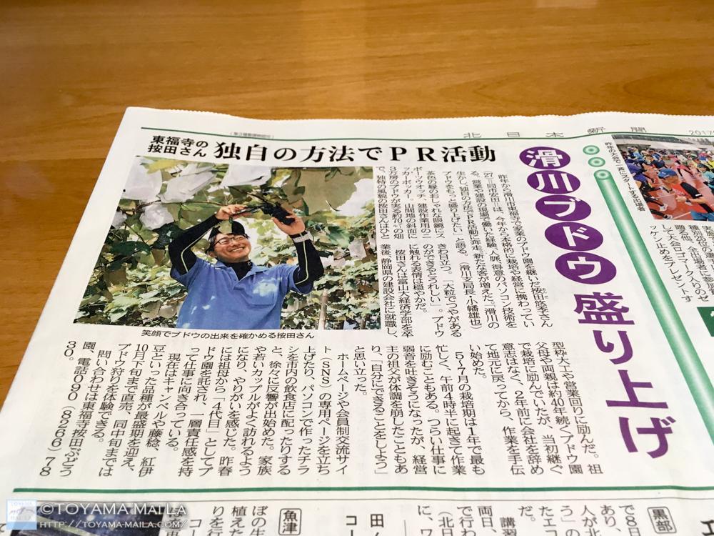 東福寺按田ぶどう園 富山 ぶどう狩り 滑川 1